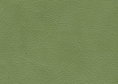 Natur-Pistachio